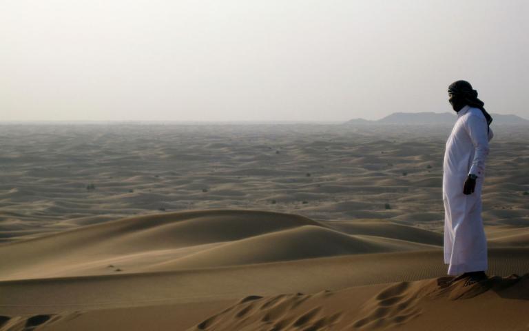 Ausblick in die Wüste