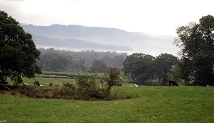 Ausblick von der Shantron Farm